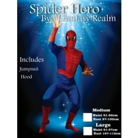 Spider Hero SuperHero Adult Male costume