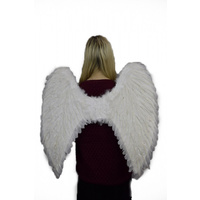 WHITE ANGEL WINGS - FEATHER