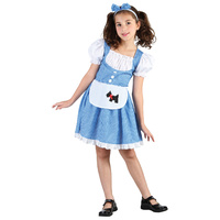 Dorothy Fairy Tale Girl Child Costume