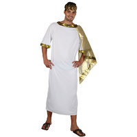 Ancient Man Toga Style Adult Costume