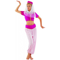 Arabian Princess Adult Female Costume
