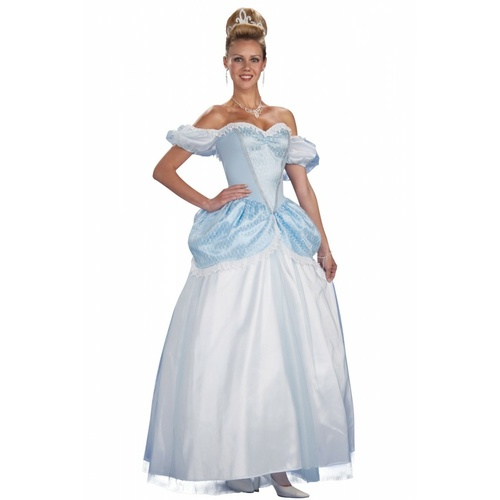 Storybook Princess Costume